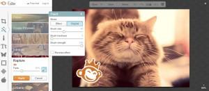 PicMonkey пикманки как сделать картинку к посту