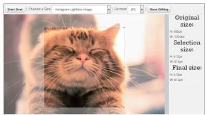 Social Image Resizer Tool как изменить размер картинки