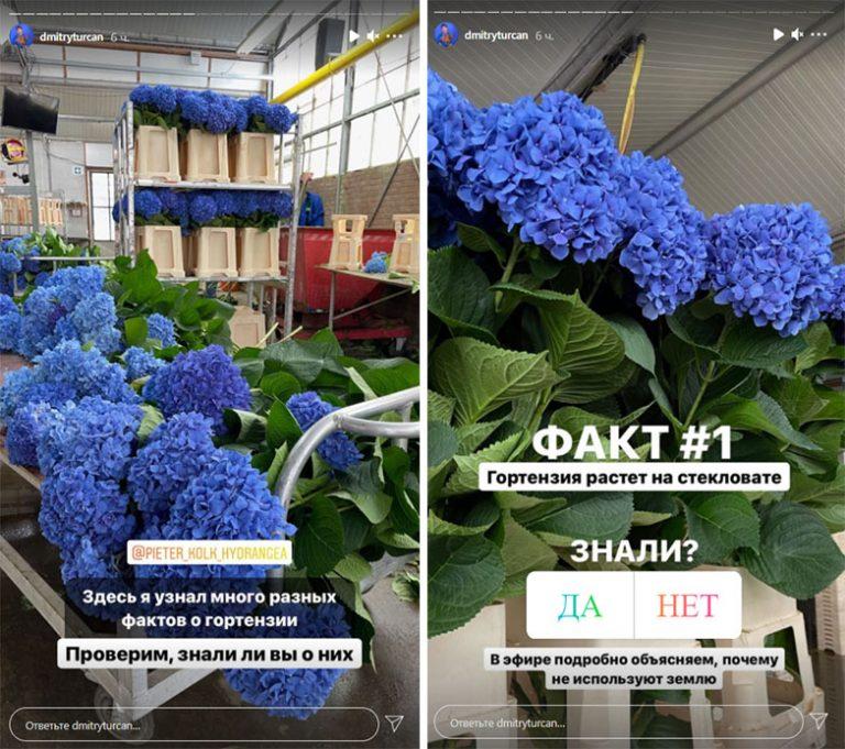 Интерактивы в Сторис цветочного магазина в Инстаграм