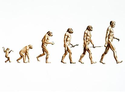 Эволюция зубочистки (или чему может научить пища, застрявшая между зубов)