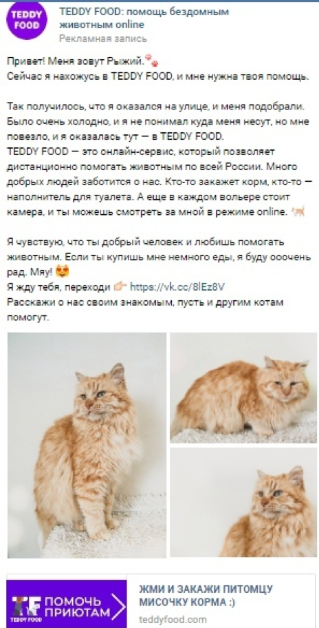 реклама VK промосты помощь животным приют