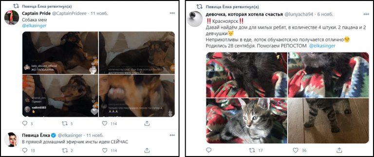 Что репостят знаменитости Украины. Елка